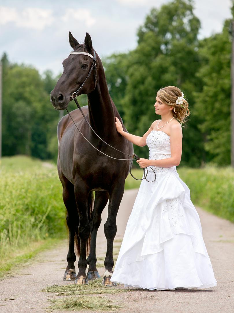 Brud med häst
